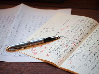 美しい文字が書けるペン パイロットシルバーン